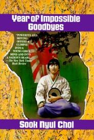 Year Of Impossible Goodbyes capa
